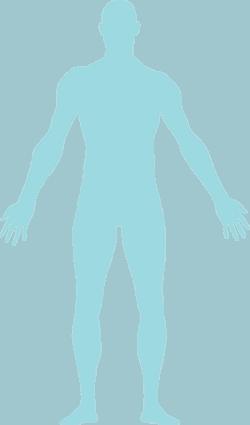 fysizo-body
